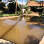 pool-cleanup-guardian-pool-care